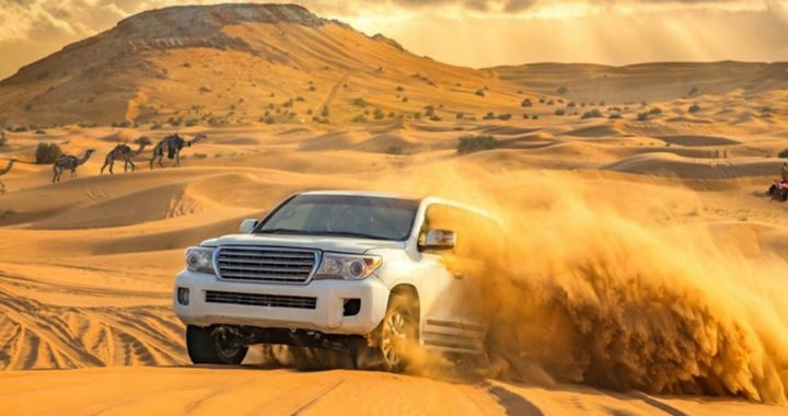 Focusing on the importance of your trip to Dubai